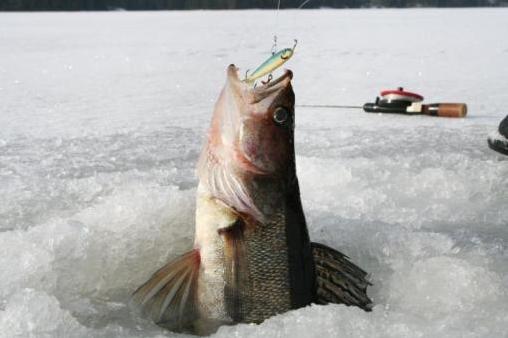 рыбалка в швеции на озере сторуман